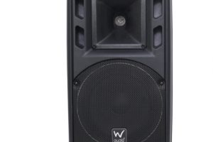 Active speaker repair powered speaker repair W-Audio PSR-8A